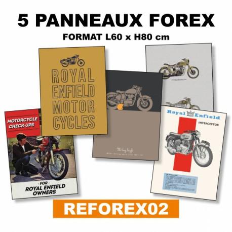 Lot de 5 panneaux en Forex